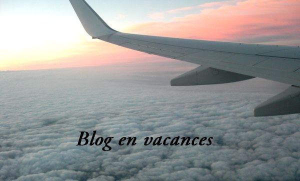 Blog en vacances avion