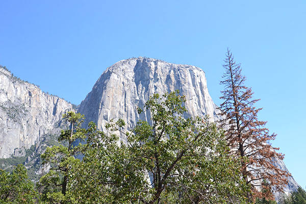 Yosemite-parc-national-californie-road trip